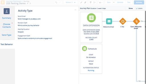 Activity type Marketing Cloud Release 18