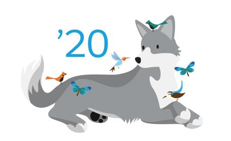 Salesforce Spring '20 Release