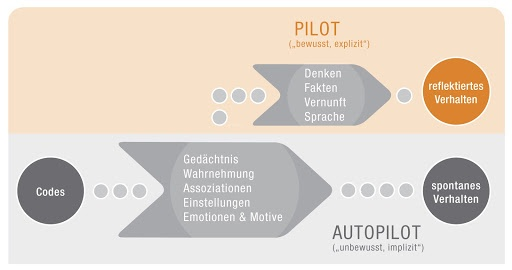 Pilot Autopilot Neuromarketing